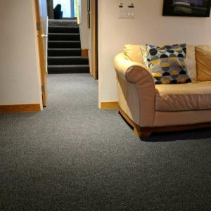 Commercial Carpet for Home Use