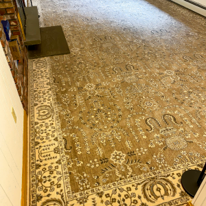 Nourison - Grand Parterre - Sarouk - Hazelnut - Wall to Wall Carpet